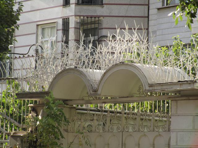 حفاظ شاخ گوزنی روی قوس دیوار