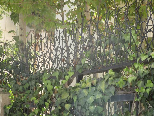 حفاظ شاخ گوزنی برای همه ی کاربری ها