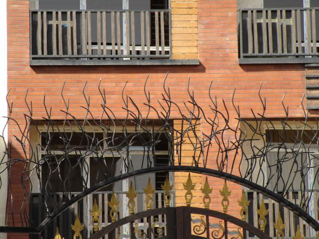 حفاظ شاخ گوزنی برای ورودی