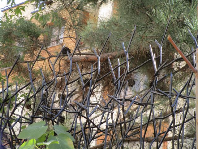 حفاظ شاخ گوزنی با رنگ الکترواستاتیک