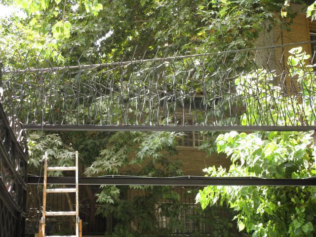 نصب حفاظ شاخ گوزنی