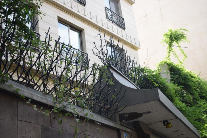 نصب حفاظ شاخ گوزنی روی دیوار با ارتفاع مختلف